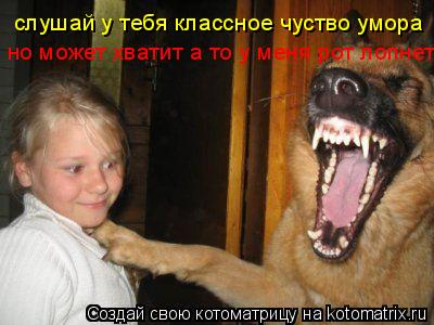Котоматрица: слушай у тебя классное чуство умора но может хватит а то у меня рот лопнет