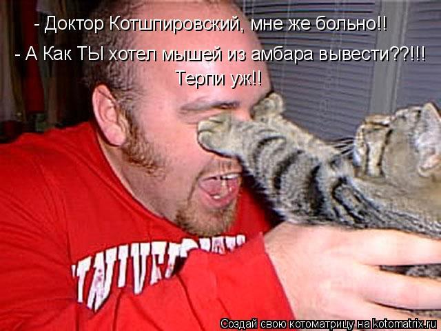Котоматрица: - Доктор Котшпировский, мне же больно!! Терпи уж!! - А Как ТЫ хотел мышей из амбара вывести??!!!