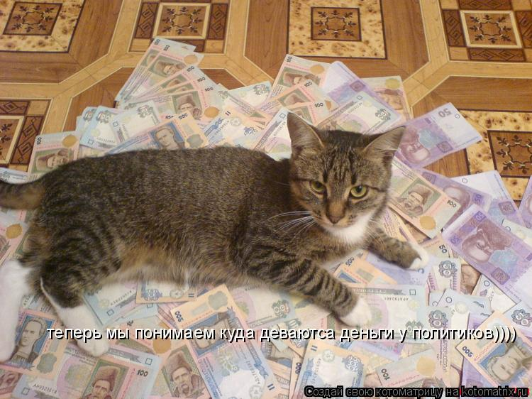 Котоматрица: теперь мы понимаем куда деваютса деньги у политиков))))
