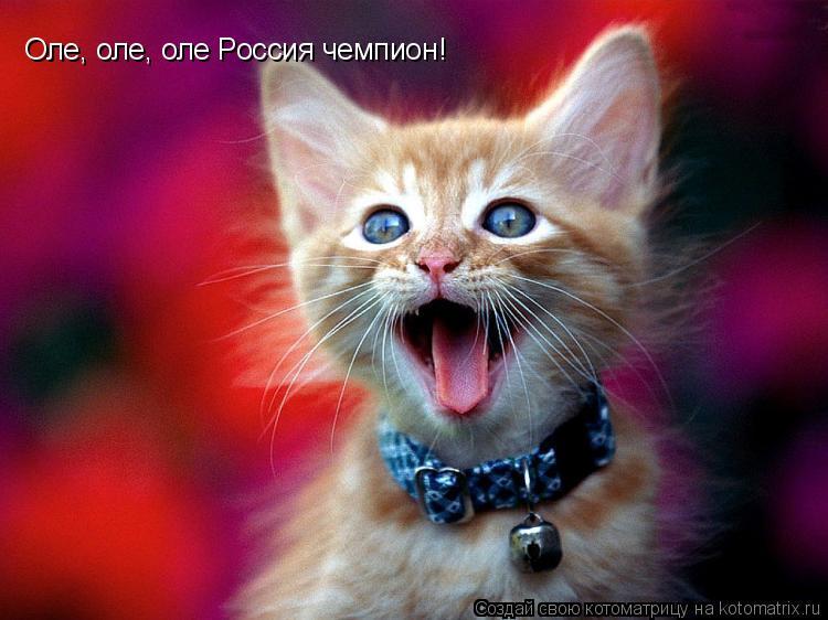 Котоматрица: Оле, оле, оле Россия чемпион!