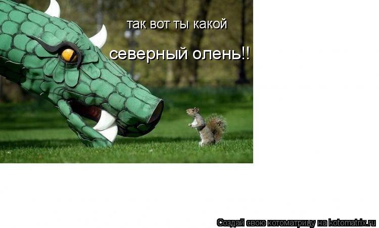 Котоматрица: так вот ты какой северный олень!!