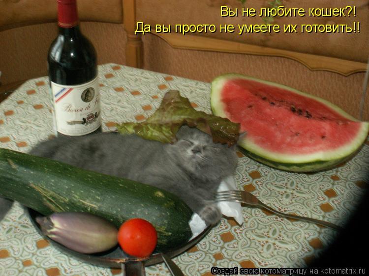 Котоматрица: Вы не любите кошек?!  Да вы просто не умеете их готовить!!