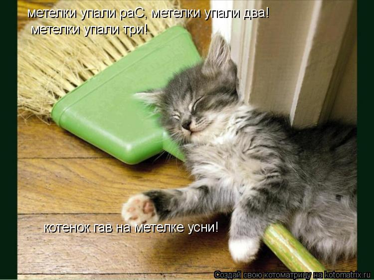 Котоматрица: метелки упали раС, метелки упали два! метелки упали три! котенок гав на метелке усни!
