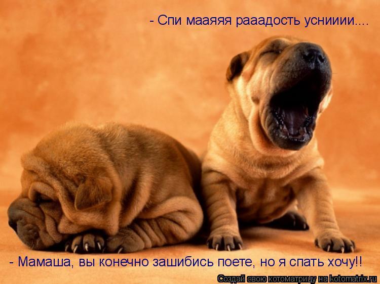 Котоматрица: - Спи мааяяя рааадость уснииии.... - Мамаша, вы конечно зашибись поете, но я спать хочу!!