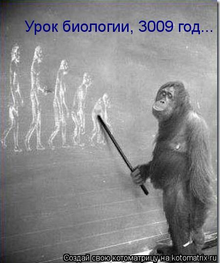Котоматрица: Урок биологии, 3009 год...