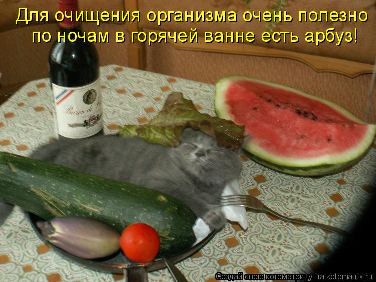 Котоматрица: Для очищения организма очень полезно по ночам в горячей ванне есть арбуз!