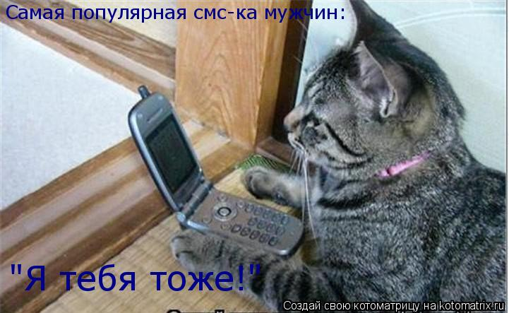 "Котоматрица: Самая популярная смс-ка мужчин: ""Я тебя тоже!"""