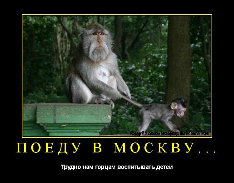 Котоматрица: ПОЕДУ В МОСКВУ... Трудно нам горцам воспитывать детей