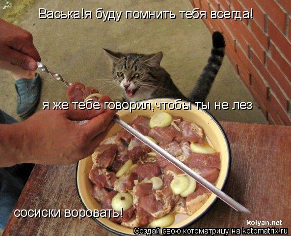 Котоматрица: Васька!я буду помнить тебя всегда! я же тебе говорил,чтобы ты не лез  сосиски воровать!