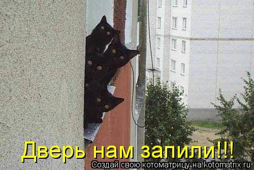 Котоматрица: Дверь нам запили!!!