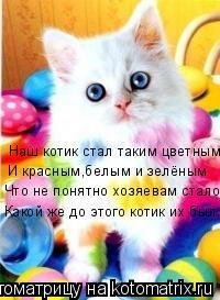 Котоматрица: Наш котик стал таким цветным И красным,белым и зелёным Что не понятно хозяевам стало Какой же до этого котик их был...