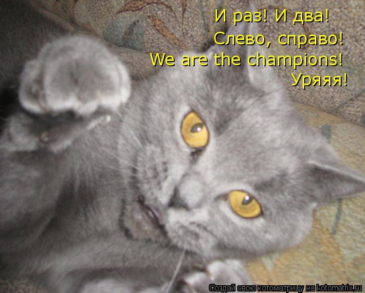 Котоматрица: И раз! И два!  Слево, справо! We are the champions!  Уряяя!