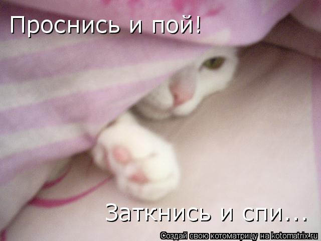 Котоматрица: Проснись и пой! Заткнись и спи...