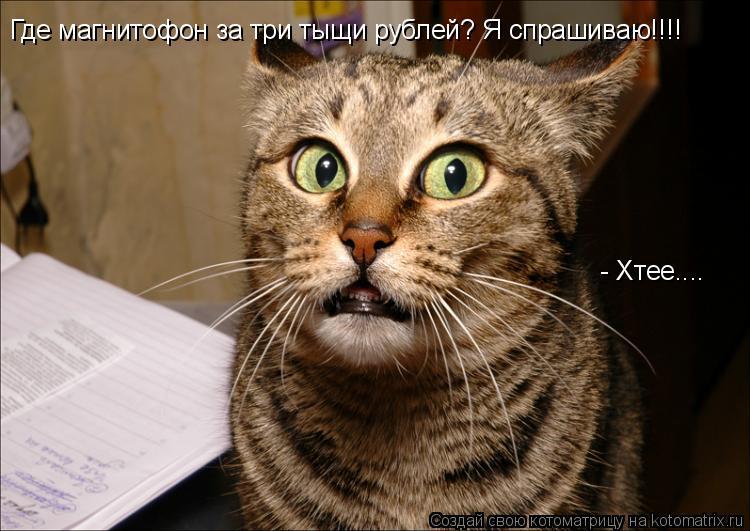 Котоматрица: Где магнитофон за три тыщи рублей? Я спрашиваю!!!! - Хтее....