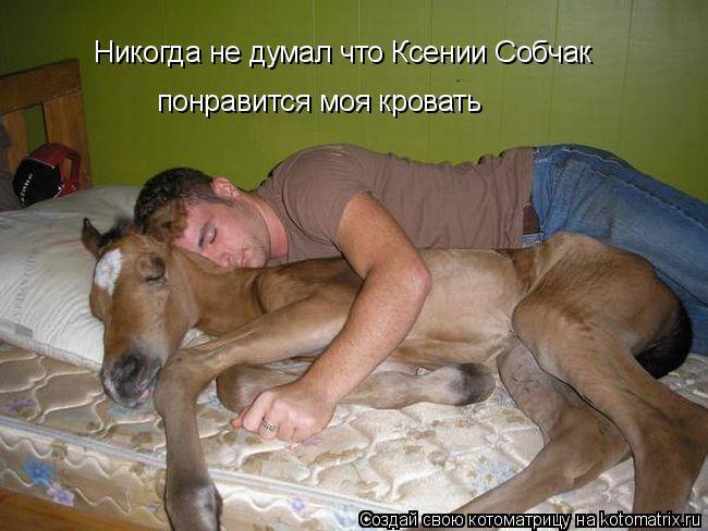 Котоматрица: Никогда не думал что Ксении Собчак  понравится моя кровать