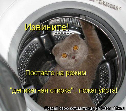 """Котоматрица: Извините!  Поставте на режим деликатная стирка пожалуйста!   Поставте на режим   """"деликатная стирка"""" , пожалуйста!"""