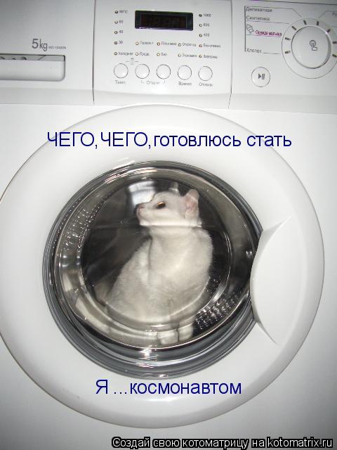 Котоматрица: ЧЕГО,ЧЕГО,готовлюсь стать   Я ...космонавтом