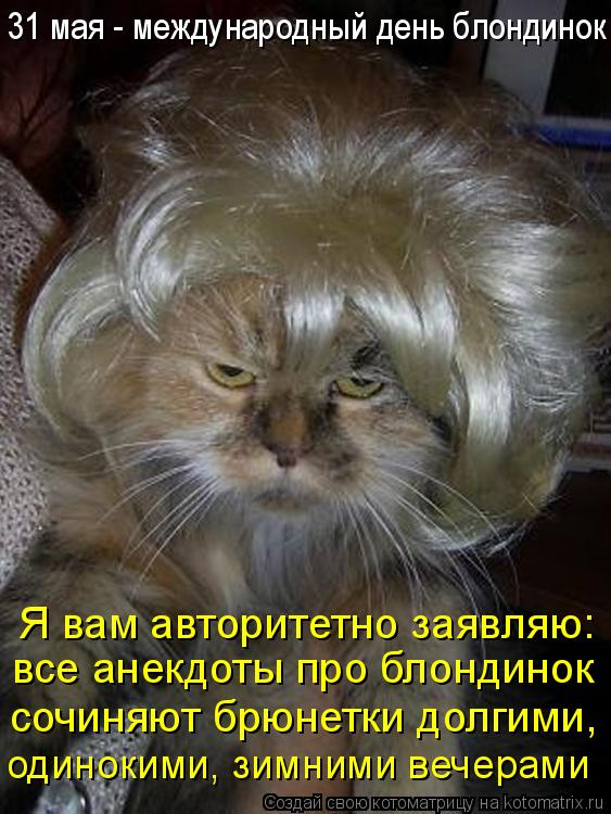 Котоматрица: Я вам авторитетно заявляю: все анекдоты про блондинок 31 мая - международный день блондинок сочиняют брюнетки долгими, одинокими, зимними ве
