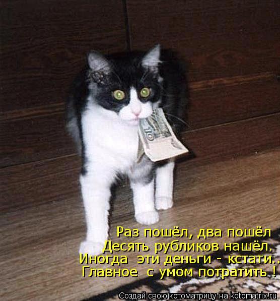 Котоматрица: Раз пошёл, два пошёл Десять рубликов нашёл.  Иногда  эти деньги - кстати...  Главное  с умом потратить !