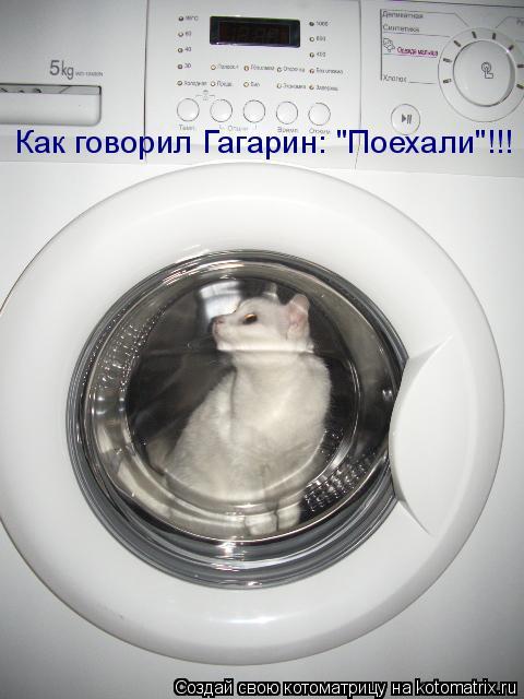 "Котоматрица: Как говорил Гагарин: ""Поехали""!!!"