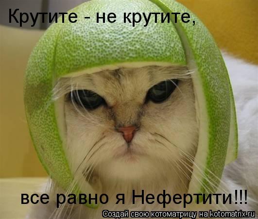 Котоматрица: Крутите - не крутите,  все равно я Нефертити!!!