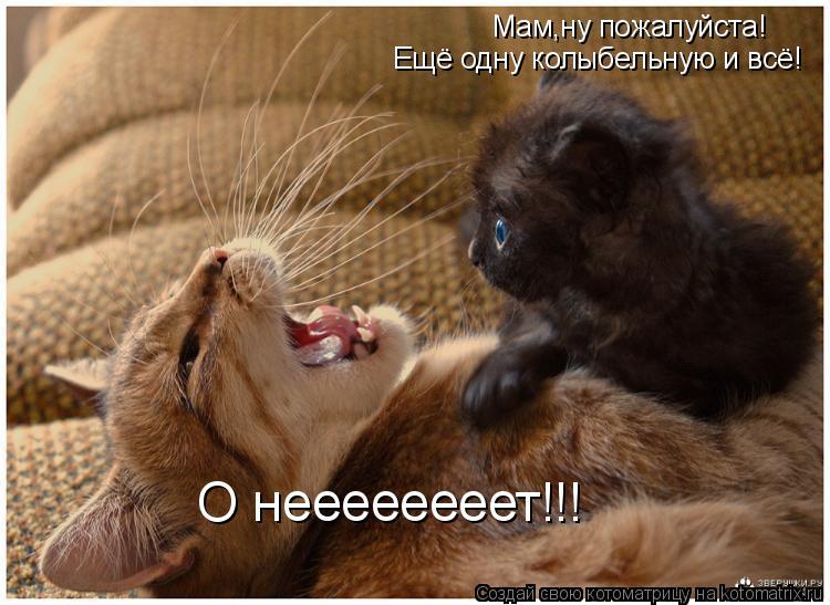Котоматрица: Мам,ну пожалуйста! Ещё одну колыбельную и всё! О неееееееет!!!
