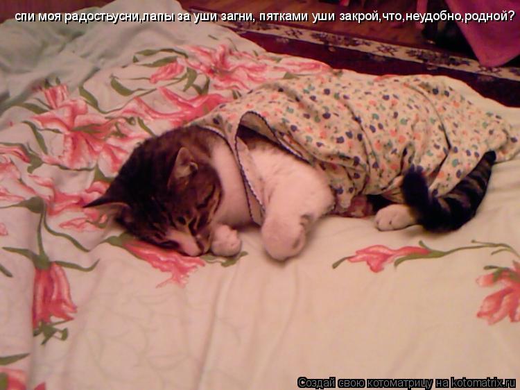 Котоматрица: спи моя радостьусни,лапы за уши загни, пятками уши закрой,что,неудобно,родной?
