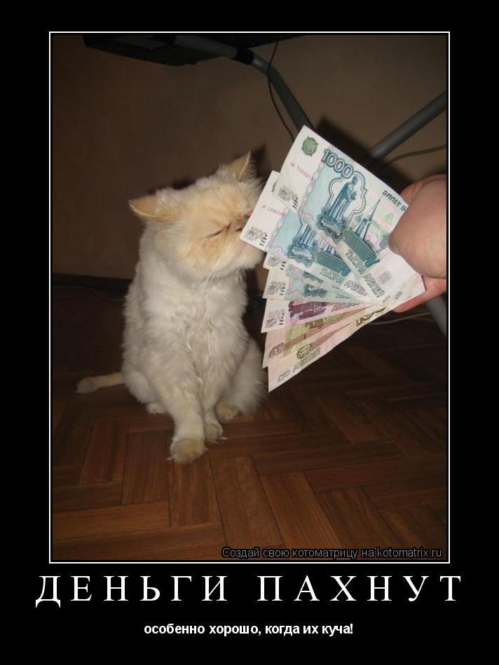 Котоматрица: деньги пахнут  oсобенно хорошо, когда их куча!