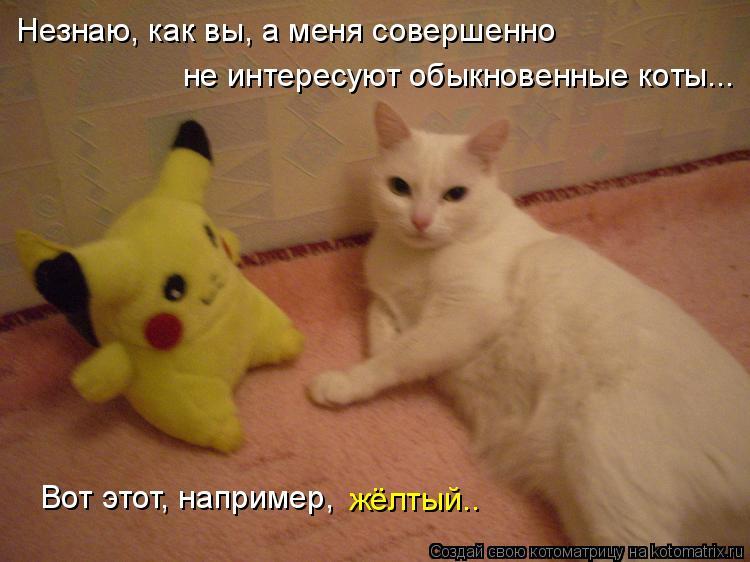 Котоматрица: Незнаю, как вы, а меня совершенно не интересуют обыкновенные коты... Вот этот, например,  жёлтый..