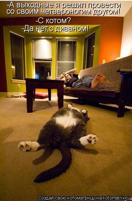 Котоматрица: -С котом? -А выходные я решил провести со своим четвероногим другом! -Да нет,с диваном!