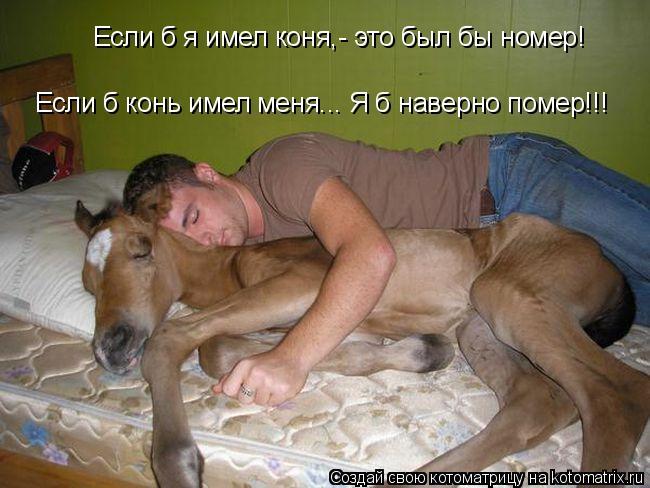 Котоматрица: Если б я имел коня,- это был бы номер! Если б я имел коня,- это был бы номер! Если б конь имел меня... Я б наверно помер!!! Если б конь имел меня... Я