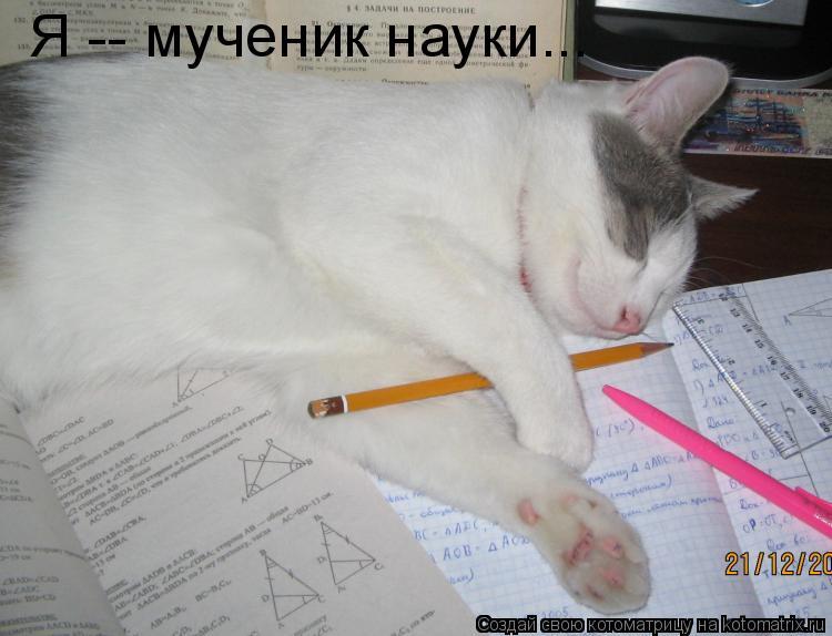 Котоматрица: Я -- мученик науки...