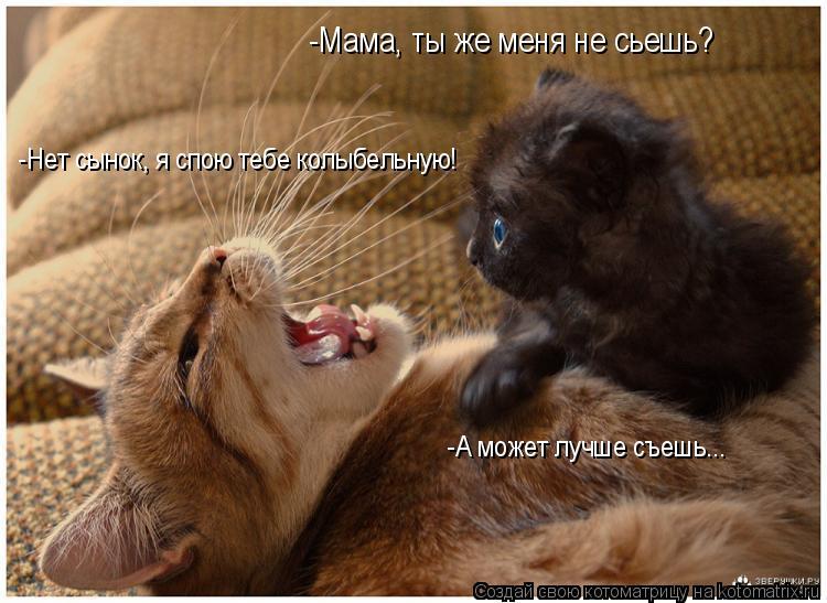 Котоматрица: -Мама, ты же меня не сьешь? -Нет сынок, я спою тебе колыбельную! -А может лучше съешь...
