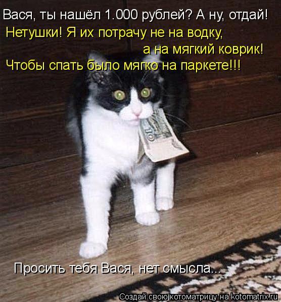 Котоматрица: Вася, ты нашёл 1.000 рублей? А ну, отдай! Нетушки! Я их потрачу не на водку,  а на мягкий коврик! Чтобы спать было мягко на паркете!!! Просить тебя В