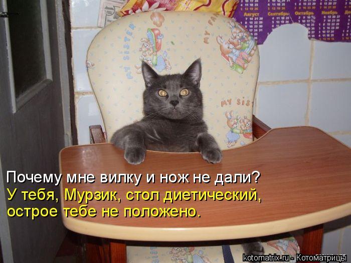 Котоматрица: Почему мне вилку и нож не дали? У тебя, Мурзик, стол диетический,  острое тебе не положено.