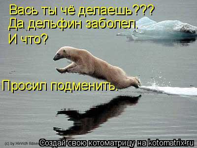 Котоматрица: Вась ты чё делаешь??? Да дельфин заболел.  И что? Просил подменить.
