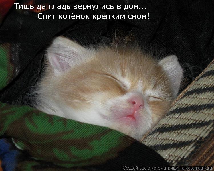Котоматрица: Тишь да гладь вернулись в дом... Спит котёнок крепким сном!