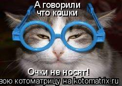 Котоматрица: А говорили что кошки Очки не носят!