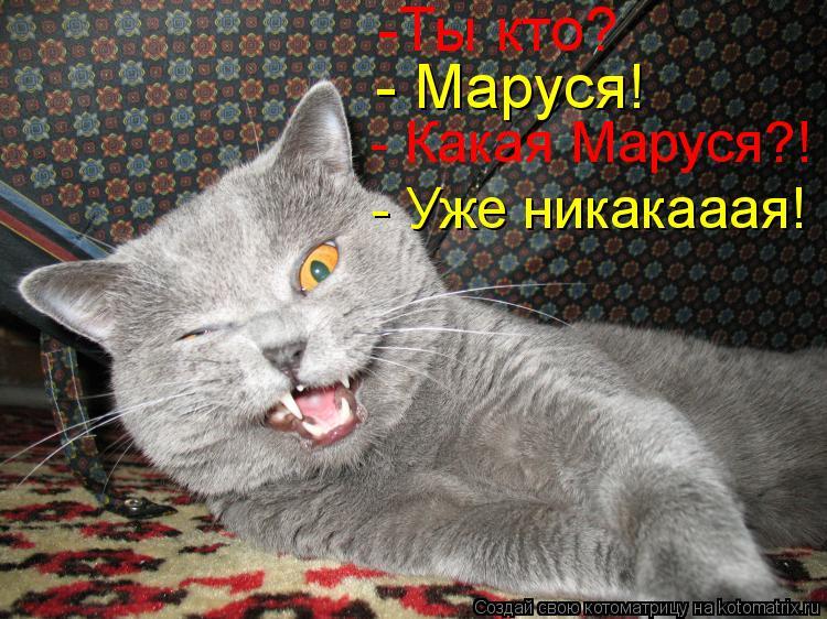 Котоматрица: -Ты кто? - Маруся! - Какая Маруся?! - Уже никакааая!