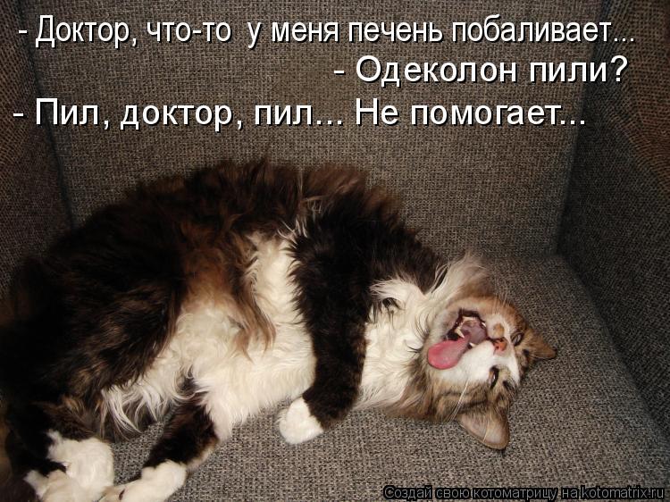 Котоматрица: - Доктор, что-то  у меня печень побаливает...  - Одеколон пили?  - Пил, доктор, пил... Не помогает...
