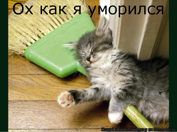 Котоматрица: Ох как я уморился