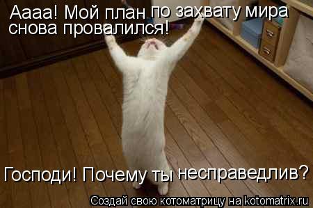 Котоматрица: Аааа! Мой план  по захвату мира снова провалился! Господи! Почему ты  несправедлив?