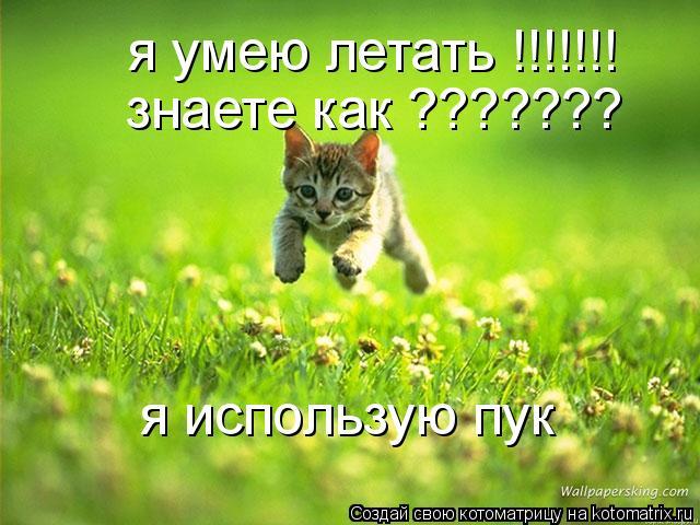 Котоматрица: я умею летать !!!!!!! знаете как ??????? я использую пук