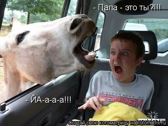 Котоматрица: - Папа - это ты?!!! - ЙА-а-а-а!!!