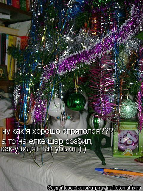 Котоматрица: а то на елке шар розбил, как увидят так убьют:):) ну как я хорошо спрятолся???