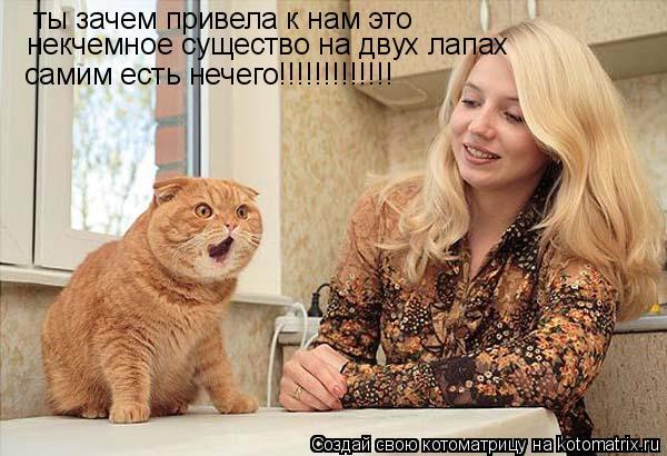 Котоматрица: ты зачем привела к нам это  некчемное существо на двух лапах самим есть нечего!!!!!!!!!!!!!