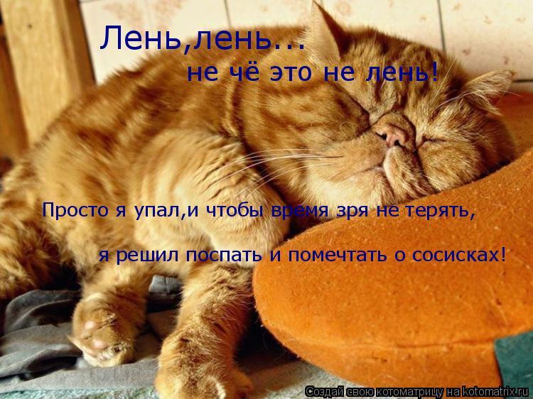 Котоматрица: Лень,лень... не чё это не лень! Просто я упал,и чтобы время зря не терять, я решил поспать и помечтать о сосисках!