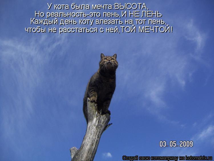 Котоматрица: У кота была мечта:ВЫСОТА, Но реальность-это пень,И НЕ ЛЕНЬ Каждый день коту влезать на тот пень, чтобы не расстаться с ней,ТОЙ МЕЧТОЙ!
