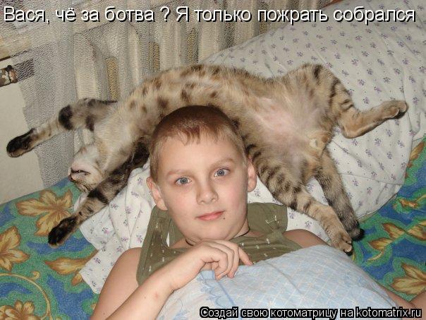 Котоматрица: Вася, чё за ботва ? Я только пожрать собрался
