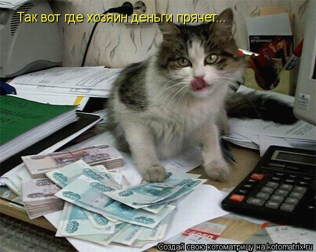 Котоматрица: Так вот где хозяин деньги прячет...